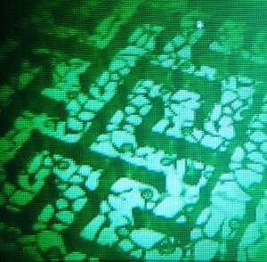 Gen6 NV view iso